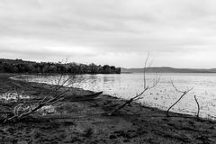 Um barco pequeno em uma costa do lago perto de algumas árvores esqueletais, em um dia temperamental Fotografia de Stock