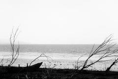 Um barco pequeno em uma costa do lago perto de algumas árvores esqueletais, em um dia temperamental Imagens de Stock Royalty Free