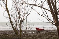 Um barco vermelho pequeno em uma costa do lago perto de alguma árvore esqueletal, na Foto de Stock