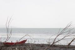 Um barco vermelho pequeno em uma costa do lago perto de algumas árvores esqueletais, em um dia temperamental Foto de Stock Royalty Free