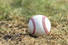 Um basebol branco na grama verde fotografia de stock royalty free