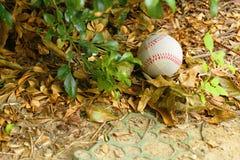 Um basebol na terra Imagem de Stock