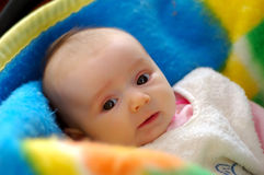 Um bebê bonito Foto de Stock Royalty Free