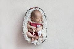 Um bebê recém-nascido dorme em uma cesta em um corpo cor-de-rosa com um brinquedo pequeno imagem de stock