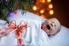 Um bebê recém-nascido semanas de idade envolvido na árvore de Natal próxima geral Fotos de Stock Royalty Free