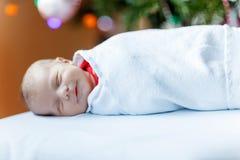 Um bebê recém-nascido semanas de idade envolvido na árvore de Natal próxima geral Imagens de Stock Royalty Free