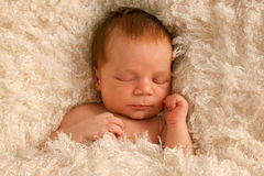 Um bebê semanas de idade na cobertura branca Fotos de Stock