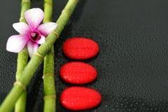 Um bicolor da orquídea levantado no bambu com seixos vermelhos colocou no zen do estilo de vida no fundo preto com gota da água Imagens de Stock Royalty Free