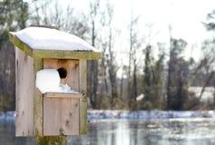 Um Birdhouse na neve Imagem de Stock