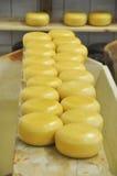 Um bom queijo Imagem de Stock