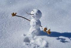Um boneco de neve com mãos dos ventos secos, de um nariz, dos olhos e de uma boca dos ramos em um esclarecimento coberto de neve  foto de stock royalty free