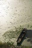 Um bote no rio do pollutional Imagens de Stock