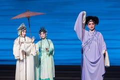 """Um  branco de ajuda de Opera""""Madame Snake†da mão-Kunqu Imagem de Stock Royalty Free"""