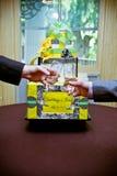 Um brinde Imagem de Stock Royalty Free