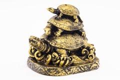 Um brinquedo pequeno é uma tartaruga fotografia de stock