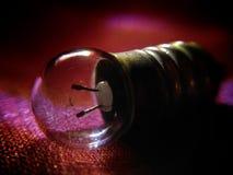 Um bulbo esquecido pequeno Imagem de Stock