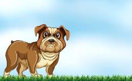 Um cão ilustração royalty free