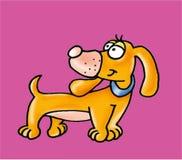 Um cão Foto de Stock