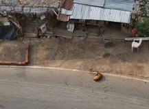 Um cão que descansa em uma estrada Fotografia de Stock Royalty Free