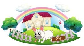Um cão que guarda uma casa Fotografia de Stock Royalty Free