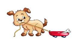 Um cão que jogue Fotografia de Stock Royalty Free