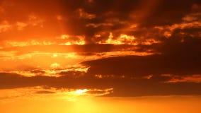 Um céu do por do sol video estoque