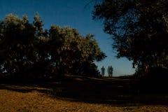 Um céu noturno silencioso bonito da Lua cheia acima das árvores e das silhuetas transparentes dos povos no céu Imagem de Stock