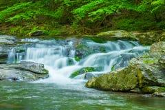 Um córrego de fluxo da montanha Fotos de Stock Royalty Free