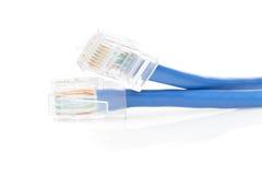 Um cabo de Ethernet azul Foto de Stock Royalty Free