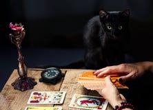 Um caixeiro de fortuna com um gato preto apresenta os cartões de tarô Foco seletivo fotos de stock royalty free