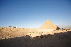 Um camelo e um cavalo que aproximam uma pirâmide Imagem de Stock Royalty Free