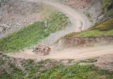 Um caminhão leva logs ao longo de uma estrada de terra foto de stock