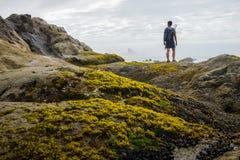 Um caminhante é estando e de vista para fora à pilha do mar fotos de stock