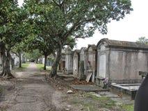 Um caminho em um cemitério Imagem de Stock Royalty Free