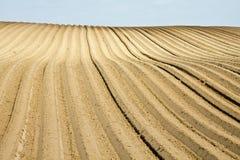 Campo arado Imagens de Stock