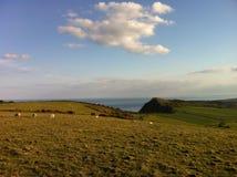 Um campo com uma vista Fotografia de Stock