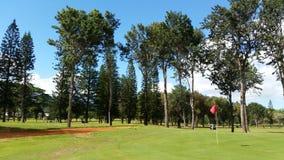 Um campo de golfe tropical Foto de Stock