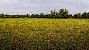 Um campo largo em switzerland Imagem de Stock