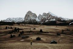 Um campo nas montanhas Imagens de Stock Royalty Free