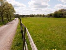 Um campo verde lindo e uns céus azuis com nuvens brancas, também Foto de Stock Royalty Free