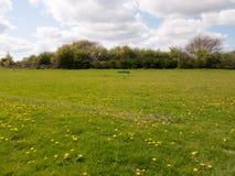 Um campo verde lindo e uns céus azuis com nuvens brancas, também Fotos de Stock