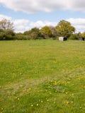 Um campo verde lindo e uns céus azuis com nuvens brancas, também Imagens de Stock