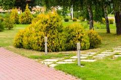 Um canteiro de flores verde no parque com um trajeto das telhas fotografia de stock royalty free