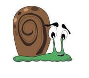 Um caracol verde feliz Fotografia de Stock Royalty Free