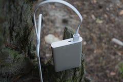 Um carregador portátil carrega a tabuleta Põe o banco com cabo na perspectiva da natureza e da madeira Imagem de Stock