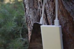 Um carregador portátil carrega a tabuleta Põe o banco com cabo na perspectiva da natureza e da madeira Imagens de Stock Royalty Free