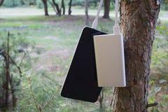 Um carregador portátil carrega a tabuleta Põe o banco com cabo na perspectiva da natureza e da madeira Foto de Stock