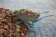 Um carrinho de mão completamente das folhas em um dia do ` s do inverno em Alemanha Fotos de Stock Royalty Free