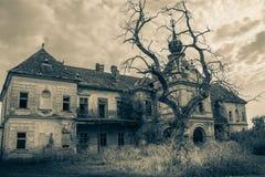 Um castelo assustador abandonado velho no estilo gótico preto e branco fotos de stock