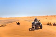 Um cavaleiro em um quadrilátero ATV em Sahara Desert imagem de stock